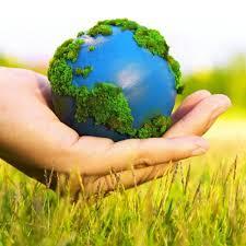 Environmentally Friendly Death Care
